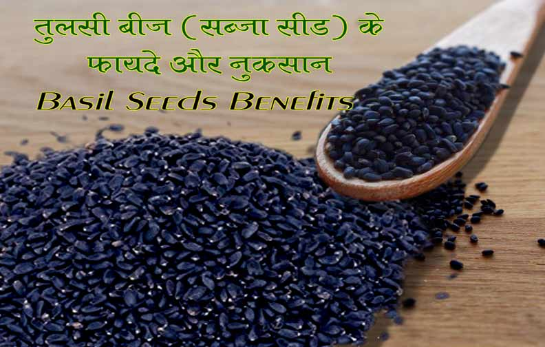 What are Sabja or Basil Seeds in Hindi