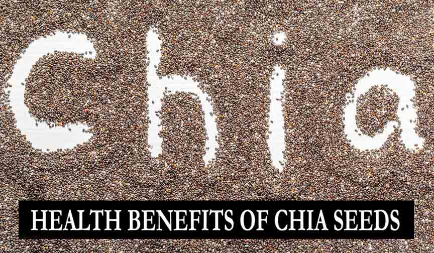 Chia Seeds Benefits, Uses and Side Effects in Hindi