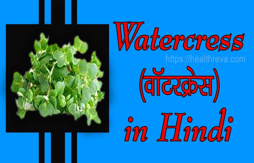 (वॉटरक्रेस)-Watercress in Hindi
