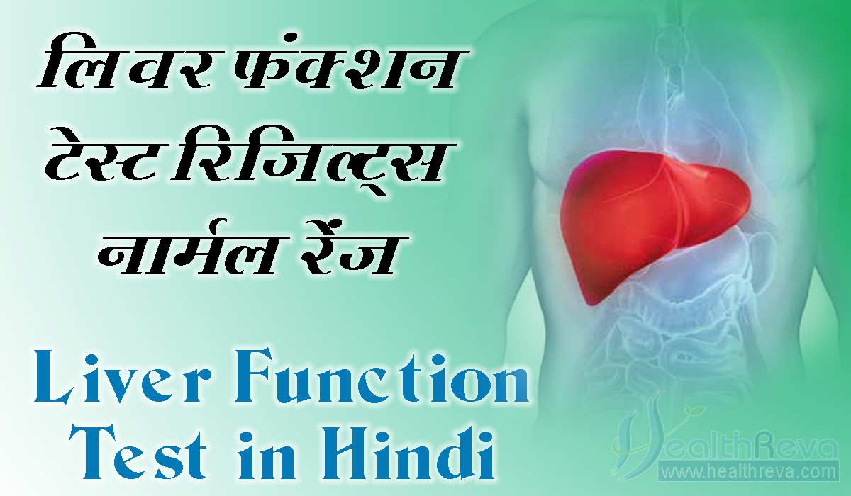 Liver Function Test in Hindi