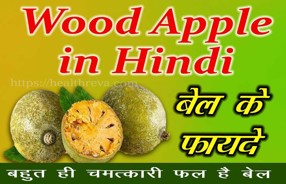 Wood Apple in Hindi