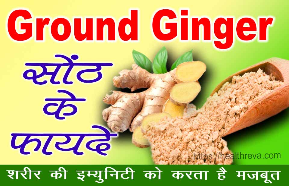Ground Ginger in Hindi