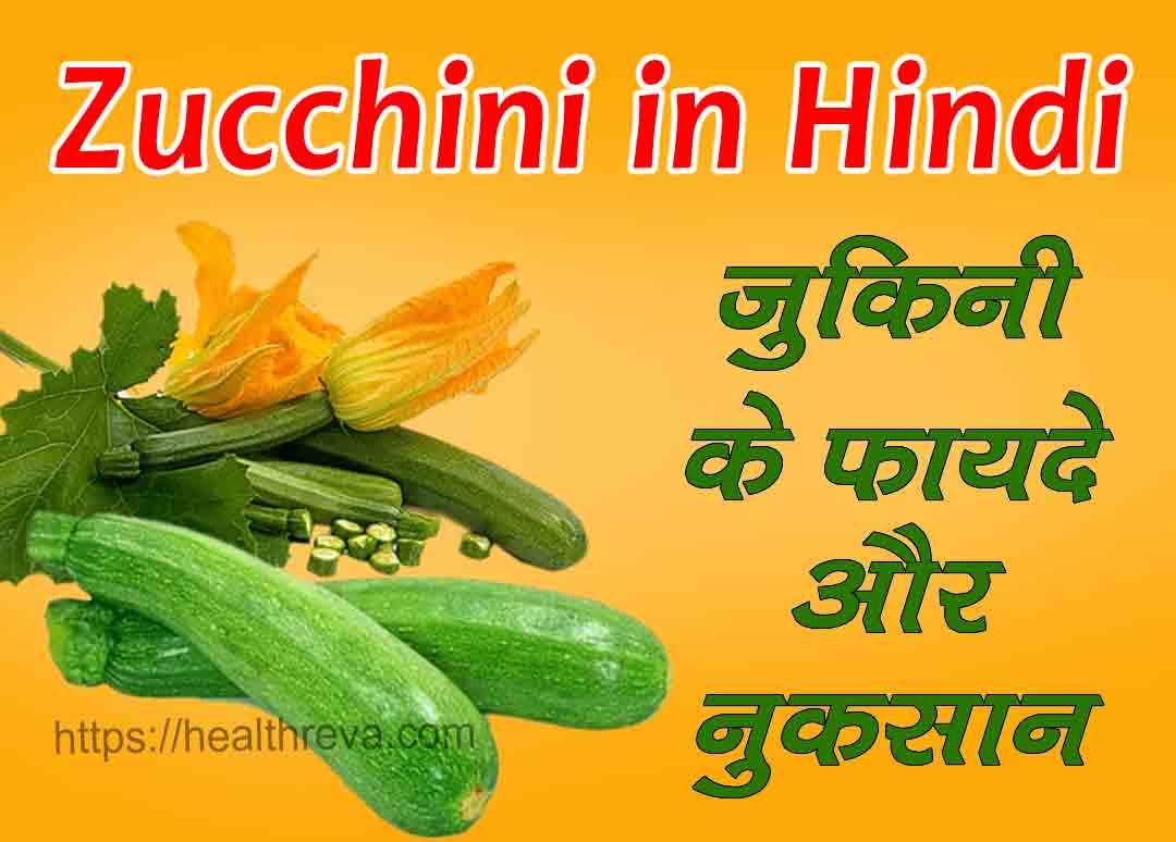 Zucchini in Hindi